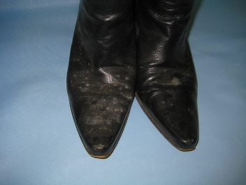 ブーツ カビ 染み
